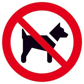 Verbotsschild Mitführen von Hunden (Tieren) verboten