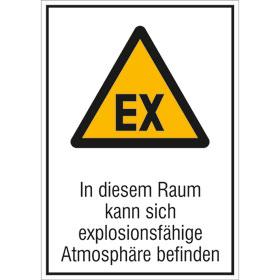 Warn-Kombischild In diesem Raum kann sich explosionsfähige